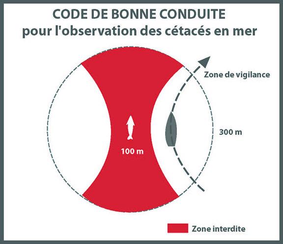 code-de-bonne-conduite-dv