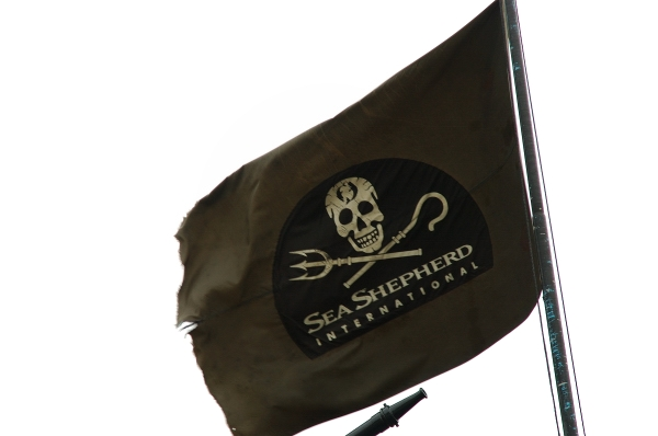 Seashepherd_small_pt.jpg