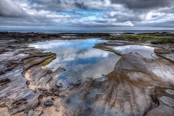 Tide_Pools_at_Galápagos,_Ecuador.jpg