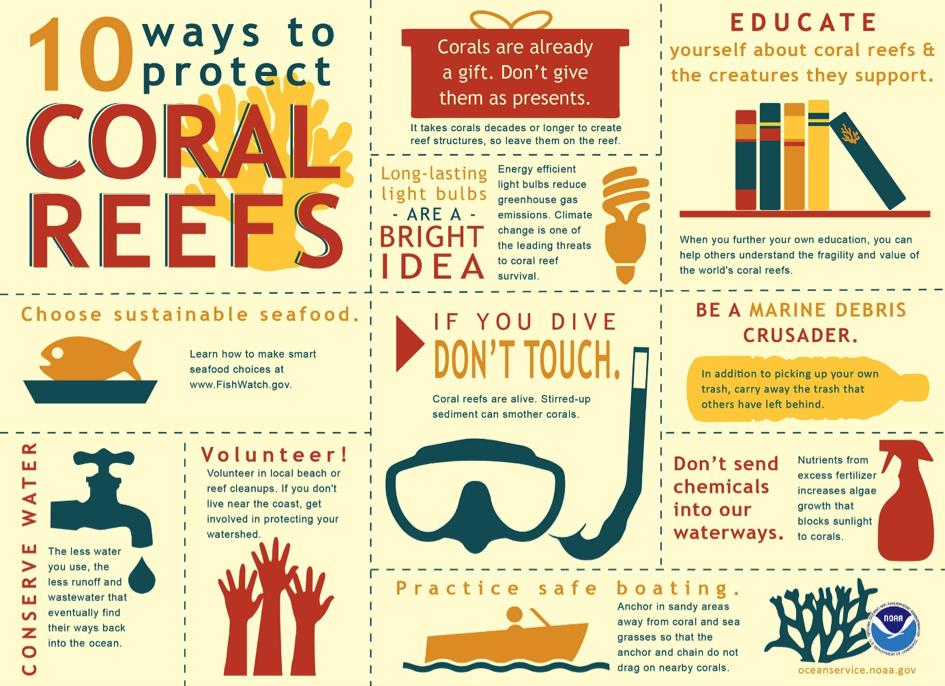 infographie-protéger-océan-vacances