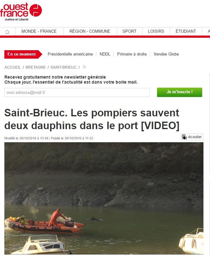 dauphins-saint-brieuc