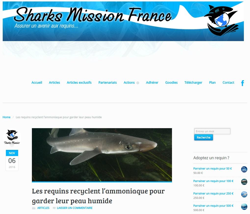 sharks-mission