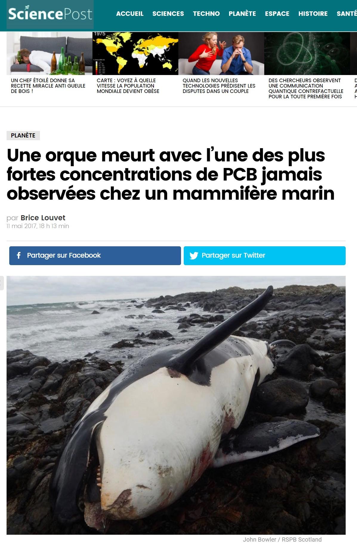 rencontre avec orques france