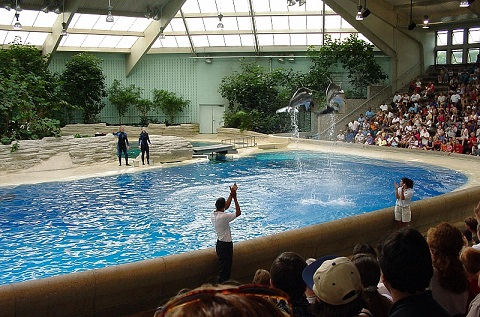 Brookfield_zoo_fg10.jpg