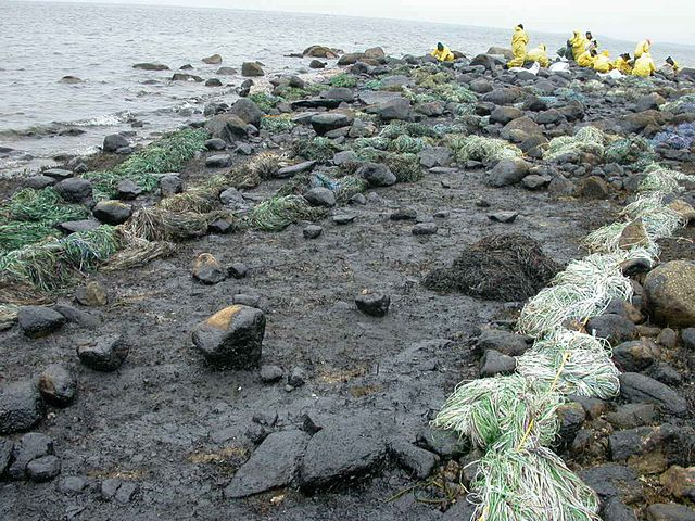 Workers_clean_up_after_oil_spill 04 06 15.jpg